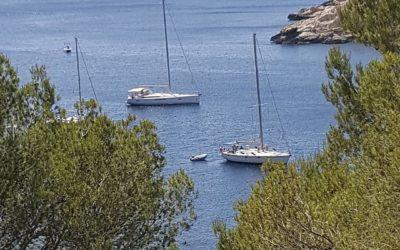 Vakantie aanbod Ibiza