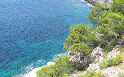 Aanbod op Mallorca
